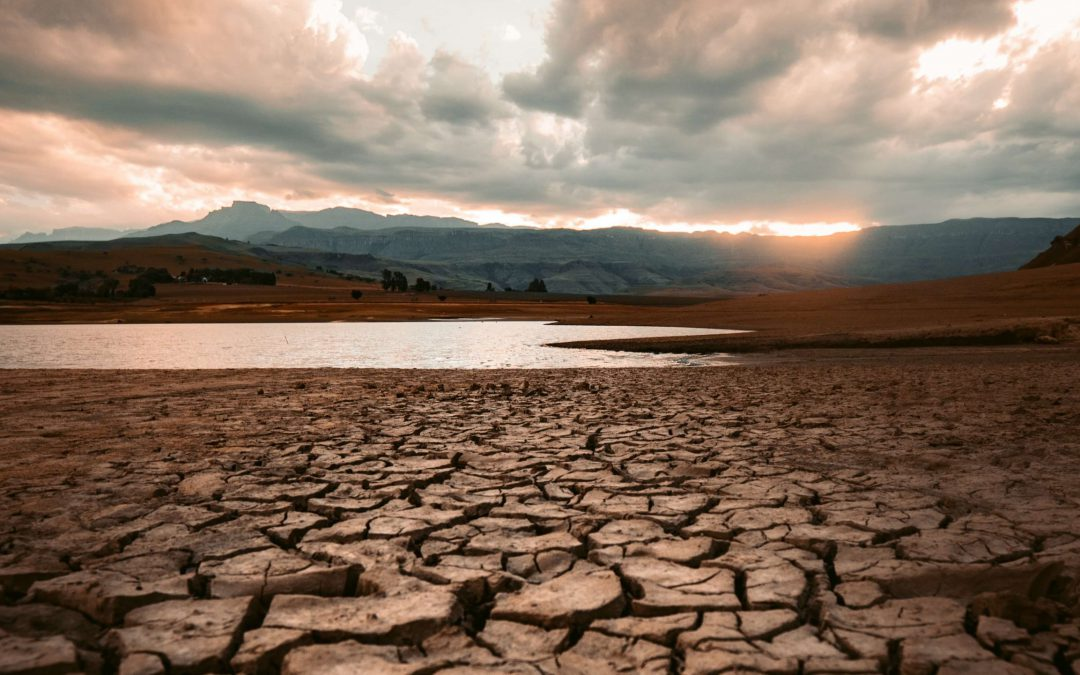 Heat and drought